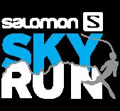 Salomon Skyrun logo